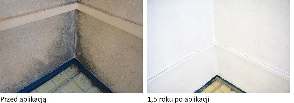 Farba Przeciw Grzybom I Pleśni Galvi